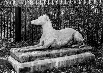 Greyhound Sculpture Black & White