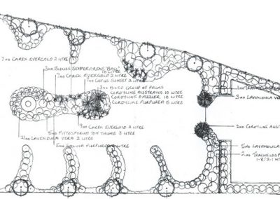 Sketch Layout of the Main Garden